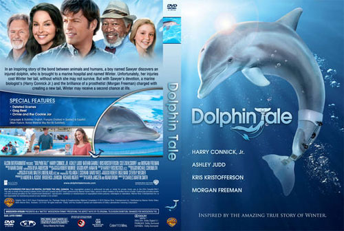 back up the dvd disc movie Dolphin Tale on a new DVD disc