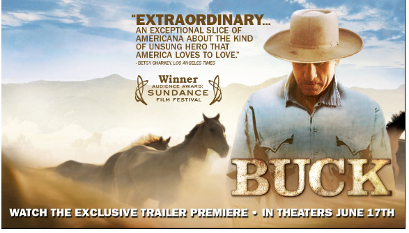 Rip Buck (2011) DVD to other video format