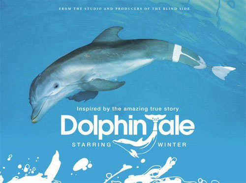 rip Dolphin Tale DVD with Magic DVD Ripper