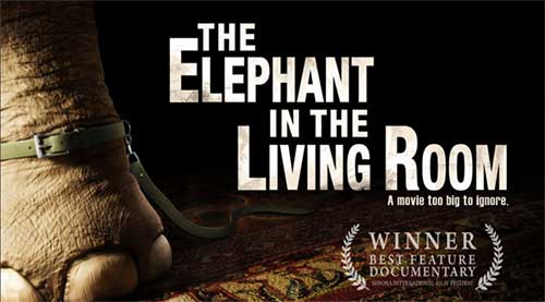 Rip The Elephant In The Living Room DVD Movie  Movie Poster Screenshot Part 49